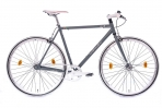 Leader FF1 28 Zoll Singlespeed/Fixie Grau Matt (2017)